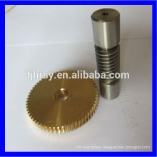 Stainless steel 304 worm shaft