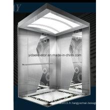 Ascenseur avec finition en acier peint (JQ-B030)