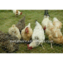 International Chicken Wire Netting