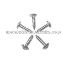 Best Quality Self Tapping Screw