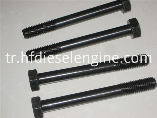 913 cylinder head bolts