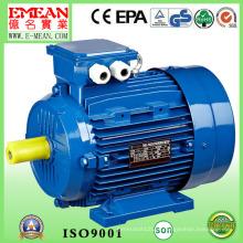 Motor elétrico trifásico do ferro fundido da série Y4