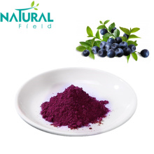 Blueberry Benefits Dehydrated Food Dried Blueberry Powder