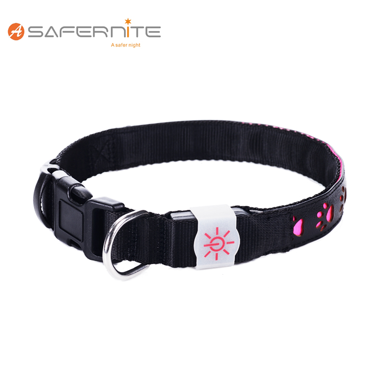 Recharge Led Dog Collar