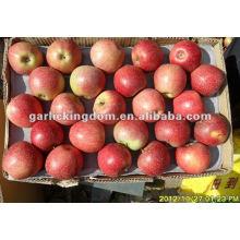 138-198 20kg Qinguan Apfel