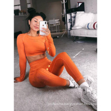 Hot Selling Europe and American Seamless Yoga Pants And Bra Women Stretch Navel Short Top And Trousers  Fitness Suits