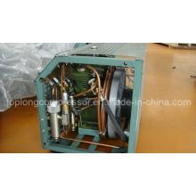 Compresor de alta presión del salto de la escafandra autónoma compresor de la pintura (BV-100)