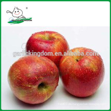 Qinguan Äpfel / Frische Qinguan Äpfel / Köstliche Qinguan Äpfel