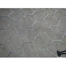 Rede de fio sextavada do estuque (o mais baixo preço) / fio de galinha usado para a rede de fio do estuque