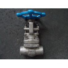 "Forged 304 3/4"" Gate Valve Class800"