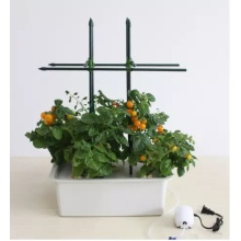 Environment Friendly Indoor Vegetable Hydroponics Vertical Garden Systems