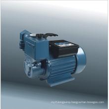 Self-Priming Vortex Pump (25ZB-30-0.37A)