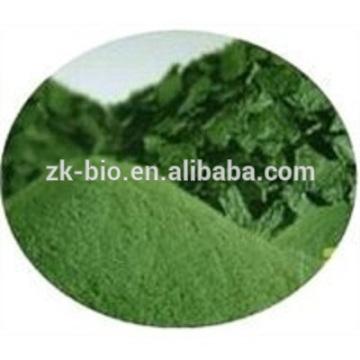Wholesale Organic Spirulina Powder Bulk
