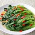 2015 Ningxia Goji Berry Food ingredients