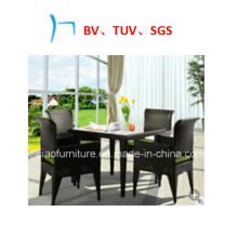 Outdoor Furniture New Style Wicker Furniture Coffee Leisure Chair (CF1224)