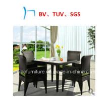 Мебель новый стиль плетеная мебель кофе стул отдыха (CF1224)