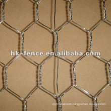 Galvanized Poultry Wire Mesh