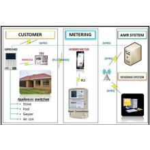Integrierte Prepaymen Ami Lösungen Remote Vending Abrechnungsdaten Appliance Control RF PLC Automatische Nachbereitung