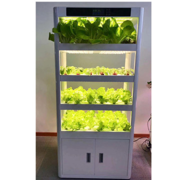 Acquponic Hydro Culture Agriculture Indoor Complete Hydroponic System