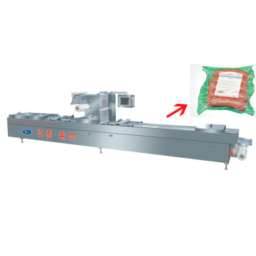 Vacuum Packaging Equipment for Hazel