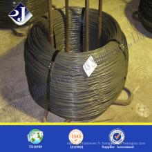 Barre de fil d'acier SAE1008 / SAE1006 Low Carton