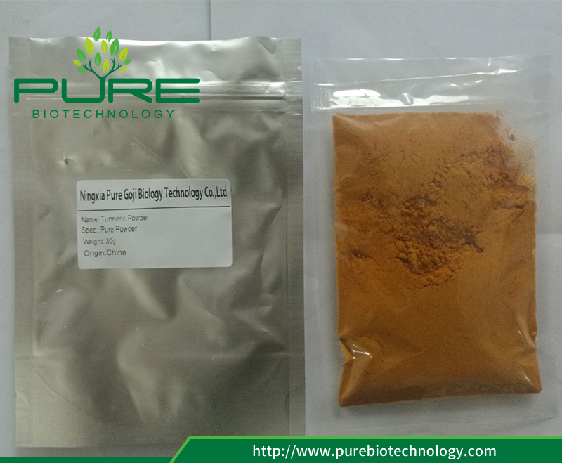 Purebiotechnology Turmeric Fine Powder