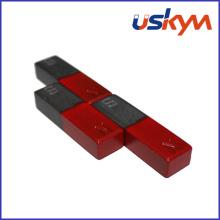 China Study Ferrite Magnets (F-002)