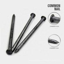 Fuente de fábrica Precio de fábrica de Q195 Common Nail
