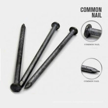 Factory Supply Factory Price of Q195 Common Nail