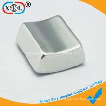 Small Segment Rare Earth Magnet