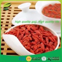 Salud Jumbo baya de lobo orgánico Goji secado Berry