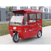 Mini Electrombile, Fully Enclosed Manned Electric Vehicles