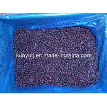 Blueberry congelado com alta qualidade