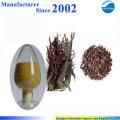 Shikone Extract , Radix Arnebiae , arnebia root Extract