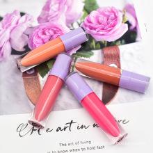 Wholesale Beauty Custom Logo High Pigmented Velvet Moisturizing Glass Lip Glaze set Lip Gloss