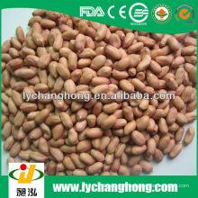 2013 neue Ernte 24-28 Erdnusskerne mit dem niedrigsten Preis