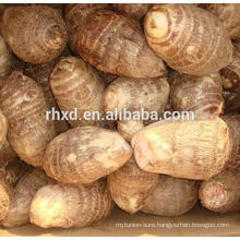 fresh eddo at Chinese taro wholesale price