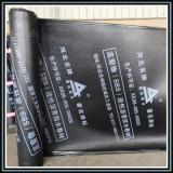SBS/APP modified bitumen waterproofing membrane building construction materials