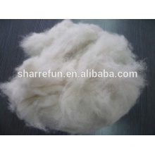 China Factory Dehaired Fox Wool 16.0mic 26-28mm