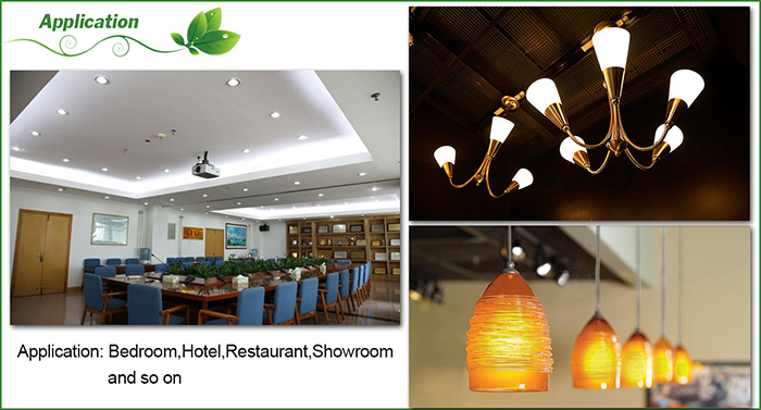 Application of LED corn light