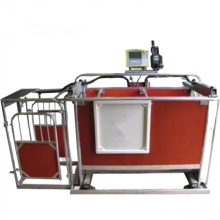Ovejas Equipo Automático 3 vías ovejas Cabra Draft precio de fábrica