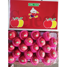 2020 New Crop Fresh China Red Paper Bagged FUJI Apple