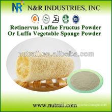 Natural Luffa Powder from Luffa Sponge