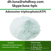 Suministro de China CAS: 56-65-5 ATP / Trifosfato de Adenosina