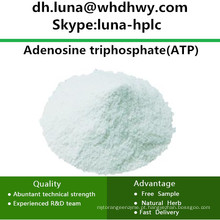 China Supply CAS: 56-65-5 ATP / Adenosina Trifosfato