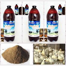 agente biológico de algas marinas utilizado como aditivo alimentario orgánico