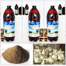 seaweed biological agent used for organic feed additive