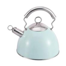 3L Green stainless steel garden teapot