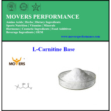 Hot Sell Weight Loss L-Carnitine Base