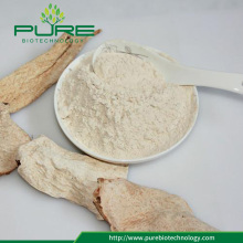 Organic angelica root slice powder in bulk